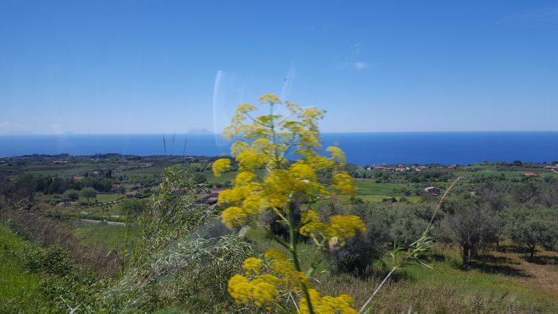 stromboli, vulkan, aeolische_inseln, reggio_calabria, strasse_von_messina, sicilia, sizilien, kalabrien, italienurlaub, bellaamoremio_italienblog, autorin,